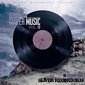 SLiVER Music Collection, Vol.12 - EP by Various Artists