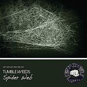 Spider Web by Tumbleweeds