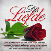Dis Liefde by Various Artists