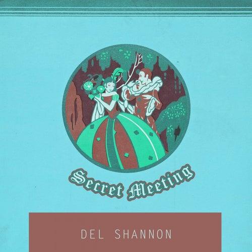 Secret Meeting von Del Shannon