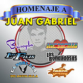 Homenaje A Juan Gabriel by Various Artists