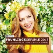 Frühlingsgefühle 2016 - 30 Lounge Titel für die ruhigen Momente im Leben by Various Artists