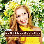 Lentegevoel 2016 - 30 Lounge nummers voor de rustige momenten in het leven by Various Artists