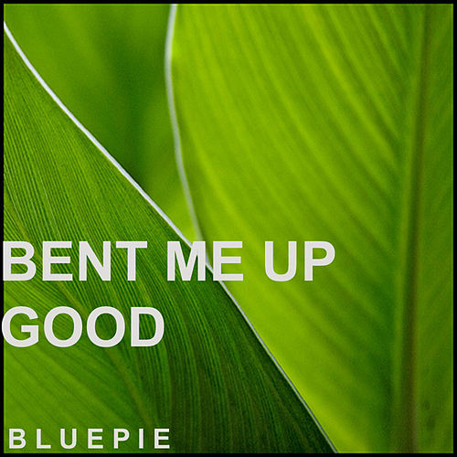 Bent Me Up Good by Various Artists