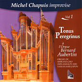 Tonus Peregrinus by Michel Chapuis