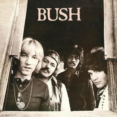 Bush by Bush