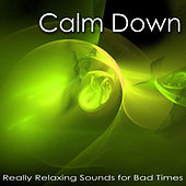 Calm Down – Really Relaxing Sounds for Bad Times, Peaceful Songs to Cope with Stress by Calm Music Ensemble
