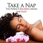 Take a Nap - The Perfect Relaxing Music for Sleep Deprived Subjects to Help them Find Peace and Harmony for their Inner Balance by Various Artists