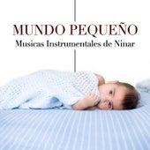 Mundo Pequeño - Canções e Musicas Instrumentales de Ninar by Various Artists