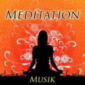 Meditation Musik für den Inneren Frieden - New Age Geräusche der Natur mit Klaviermelodien by Various Artists