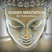 Guided Meditation for Deep Relaxation - Guided Meditation Audio & Relaxing Sleep Music to Ease Stress and Calm your Nerves by Various Artists