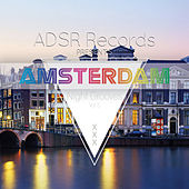 Amsterdam Night Grooves, Vol. 5 by Various Artists