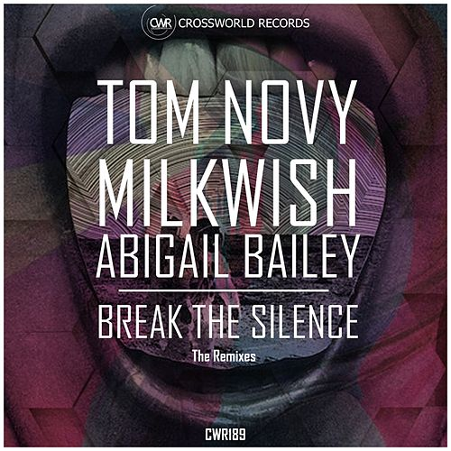 Break The Silence (The Remixes) by Tom Novy