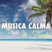 Musica Calma de Fundo by Various Artists