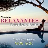 Músicas Relaxantes para Gravidez e Parto com Musicas Classicas New Age para Relaxamento, Bem Estar, Harmonia e Boa Noite by Various Artists