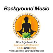 Background Music - The Best Relaxing New Age Music for Businesses, Restaurants, Clubs and Shops with Soothing Sounds of Nature by Various Artists