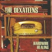 Hardwire Healing by Dexateens