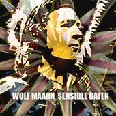 Sensible Daten by Wolf Maahn