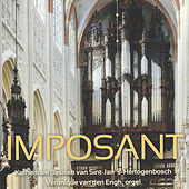 Imposant (Kathedrale Baseliek van Sint-Jan, 's-Hertogenbosch) by Véronique van den Engh