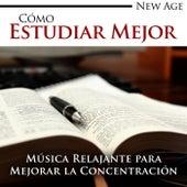 Cómo Estudiar Mejor - Música New Age muy Relajante para Mejorar la Concentración para Leer, Estudiar o Trabajar by Various Artists