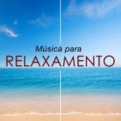 Música para Relaxamento - Como Tratar a Ansiedade, Stress e Raiva by Various Artists