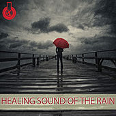 Healing Sound of the Rain by Mick Douglas