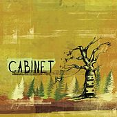 Cabinet by Cabinet