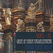 Goes, Netherlands (Grote (of) Maria Magdalenakerk) by Arno van Wijk