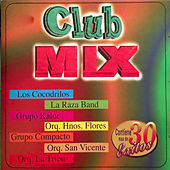 Club Mix by Various Artists