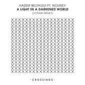 A Light In A Darkened World (Yoram Remix) (feat. Nourey) by Hazem Beltagui