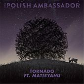 Tornado (feat. Matisyahu) by The Polish Ambassador
