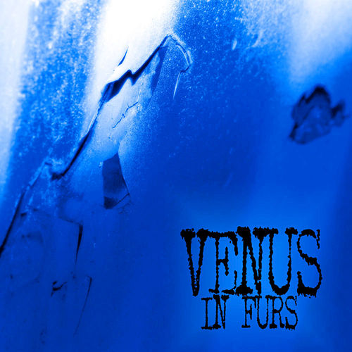 Walk - Single by The Venus In Furs