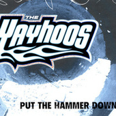 Put The Hammer Down by The Yayhoos