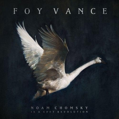 Noam Chomsky Is A Soft Revolution by Foy Vance