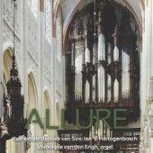Allure (Kathedrale Baseliek van Sint-Jan, 's-Hertogenbosch) by Véronique van den Engh