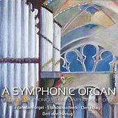 A Symphonic Organ (Franssen-Organ, Elandskerk, The Hague) by Bert Den Hertog