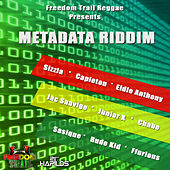Metadata Riddim by Various Artists