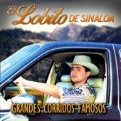 Grandes Corridos Famosos by El Lobito De Sinaloa