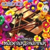 Mosaico 2015. Música de Guatemala para los Latinos by Marimba Maderas Chapinas