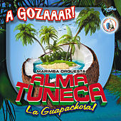 A Gozaar! Música de Guatemala para los Latinos by Marimba Orquesta Alma Tuneca