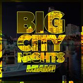 Big City Nights - Miami by Various Artists