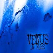 Walk (Single Remix) - Single by The Venus In Furs