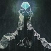 Silver Screen (Moglii Remix) by Anima
