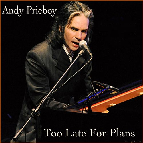Too Late for Plans by Andy Prieboy