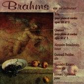 Brahms: Trio pour Piano et Cordes, Quatuor pour Piano et Cordes by Alexandre Brussilovsky