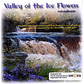 Valley of the Ice Flowers by Mel Stallwood
