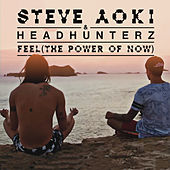 Feel (The Power Of Now) by Headhunterz