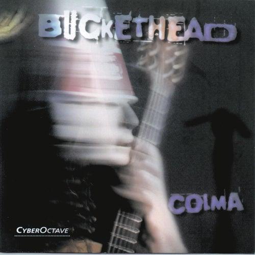 Colma by Buckethead