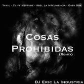 Cosas Prohibidas (Remix) [feat. Cliff Neptune, Gaby Son & Abel La Inteligencia] by Yamil