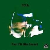 Før tlf ble smart by Fela
